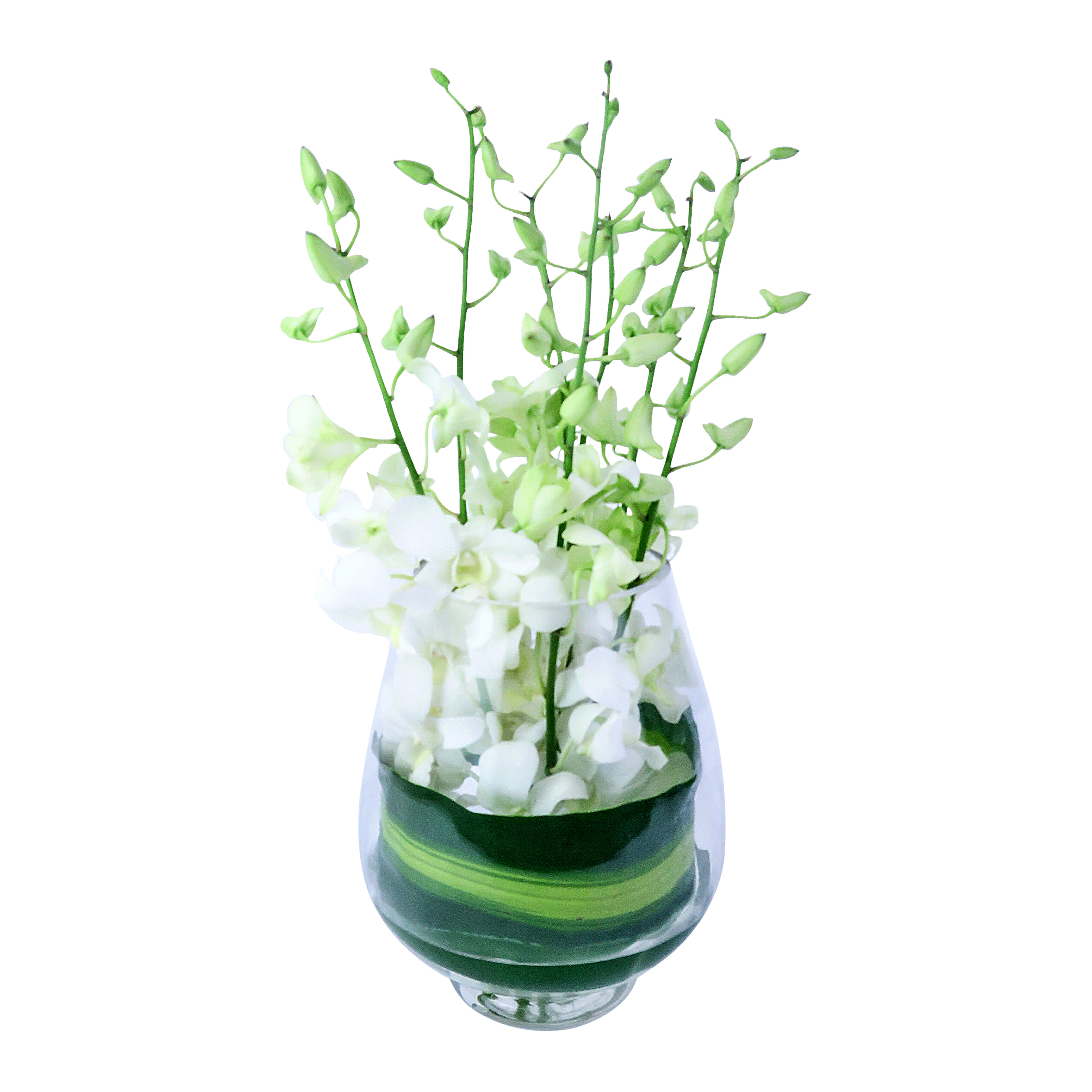 Flower delivery sydney sydney flowers from just 25 posies table centrepieces izmirmasajfo
