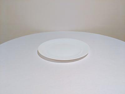 White Round Stoneware Dinner Plates, 10.5 in.