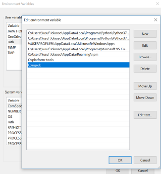 Adding ngrok to the environment variable