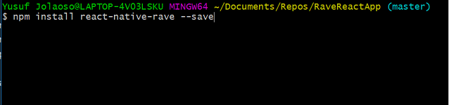 npm-install-rave image