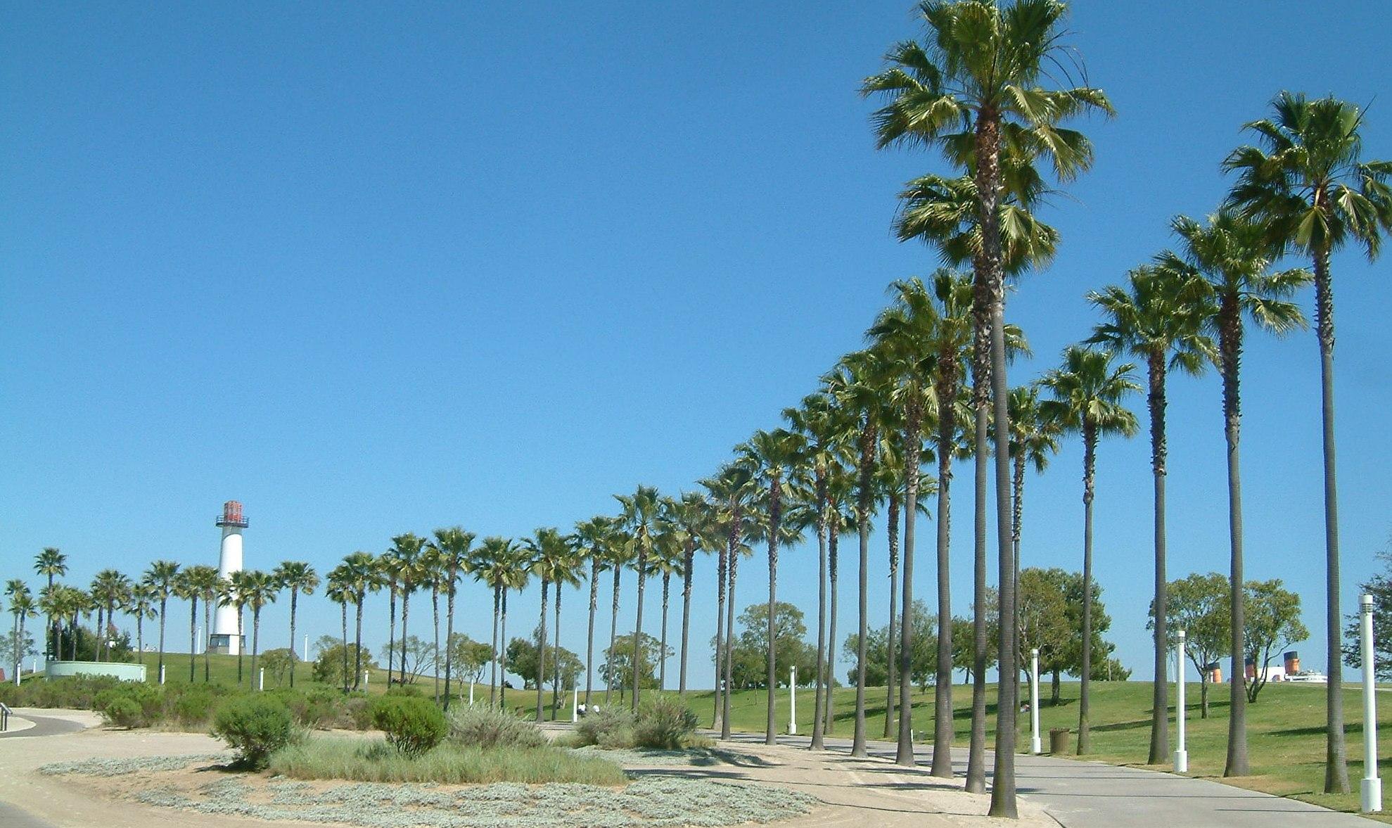 Hero photograph of Long Beach Airport LGB in Long Beach CA