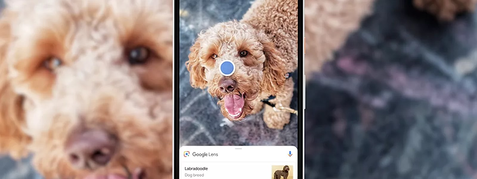 Building My Own (And Better) Google Lens