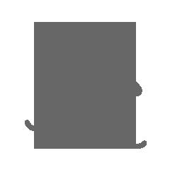Freeride/Board