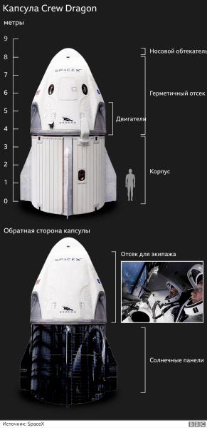 spacex live,spacex stock,spacex internet,spacex starship,spacex starlink,spacex wikipedia,spacex noticias,spacex dragon