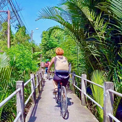 Bangkok jungle tour with Follow Me bicycle tours
