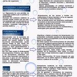 Let's Prevent! - Nuevas fichas informativas: Submarinistas Profesionales