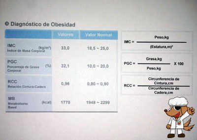 diagnóstico de obesidad