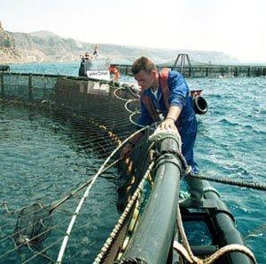 trabajos en piscifactoria