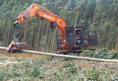 accidente laboral madera galicia