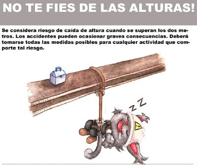 Infografía Caída de altura Safety The Cat