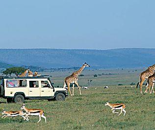 8 Top Best Private Wildlife Conservancies in Kenya