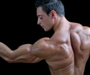 10 Best Gym Workouts For Arms