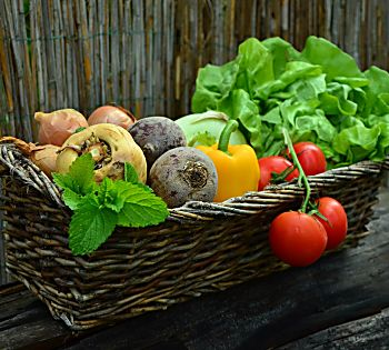 How Can Vegans Get Sufficient Vitamin B12?