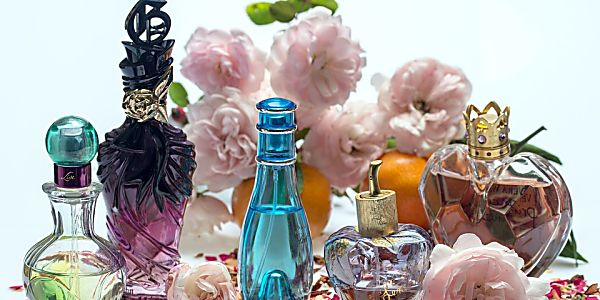 A Little Birdy Told Me How to Find the Perfect Perfume