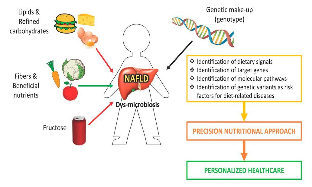 Non Alcoholic Fatty Liver Disease Diagnosed