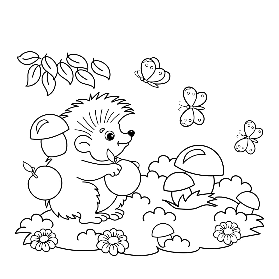 hedgehog colouring-in ethical and eco toys