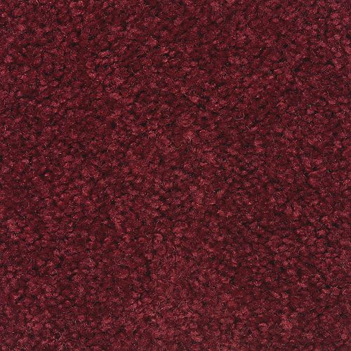 Shop for Carpet in Silver City, NM from Armstrong Floor & Wall