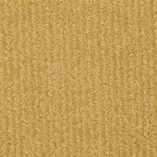 Shop for Carpet in Vero Beach, FL from Curren Flooring