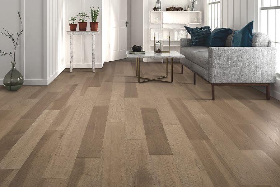 Modern Hardwood flooring ideas in Palm Harbor, FL from Floor Depot