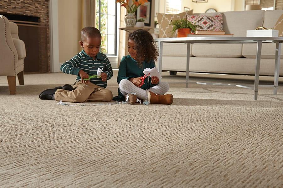 Contemporary carpet in Northfield, IL from Apelian Carpets & Orientals Inc.