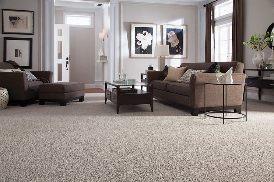 Contemporary carpet in Kankakee, IL from California Flooring