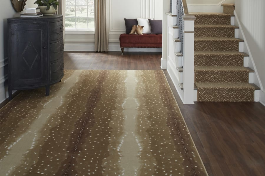 Fashionable Area rugs in Roslyn, NY from Anthony's World of Floors