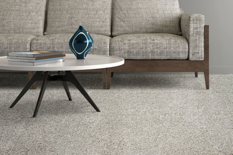 Timeless area rug in New Hyde Park, NY from Anthony's World of Floors