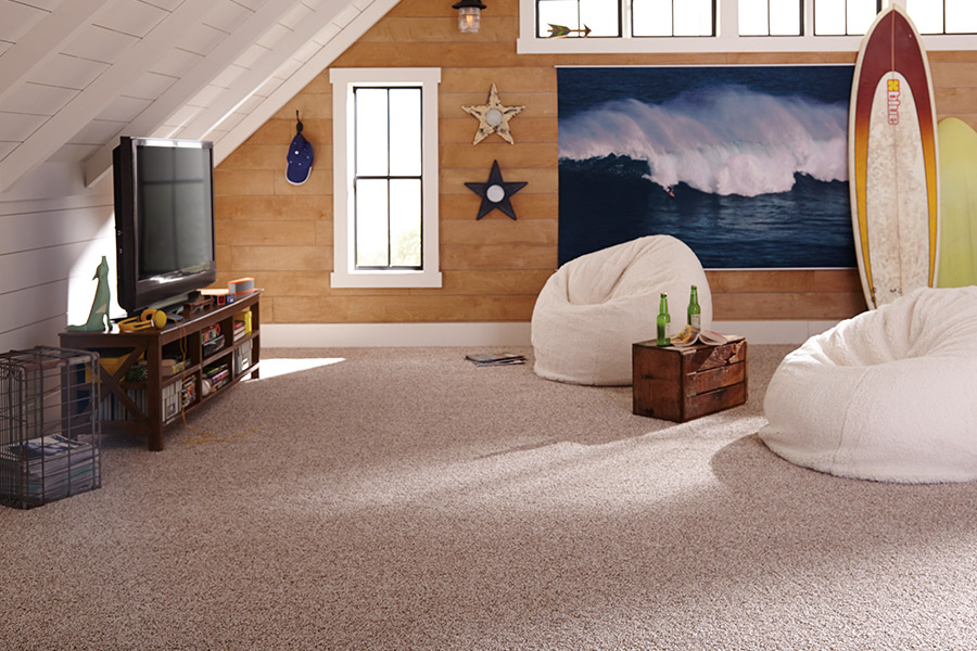 Family friendly carpet in Naperville, IL from Twin Oaks Carpet Ctr LTD