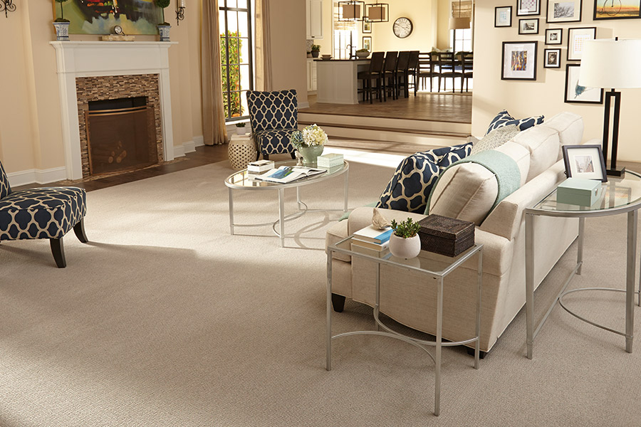 Family friendly carpet in Greenfield, WI from Hunts Flooring