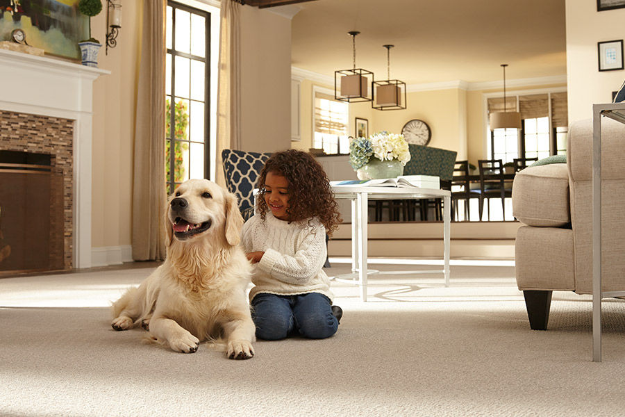 Contemporary carpet in Indian Land, SC from Sistare Carpets Inc.
