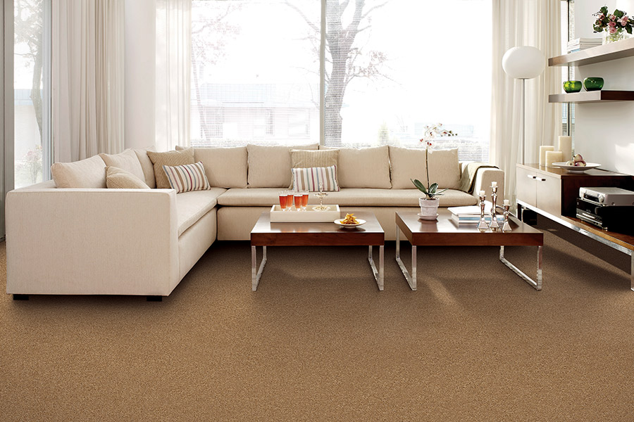 Modern carpeting in Westport, CT from Absolute Floor Designs