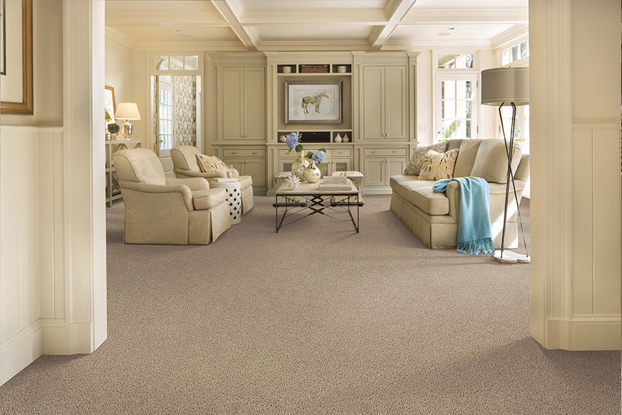 Beautiful textured carpet in Fort Myers Beach, FL from Klare's Carpet INC.