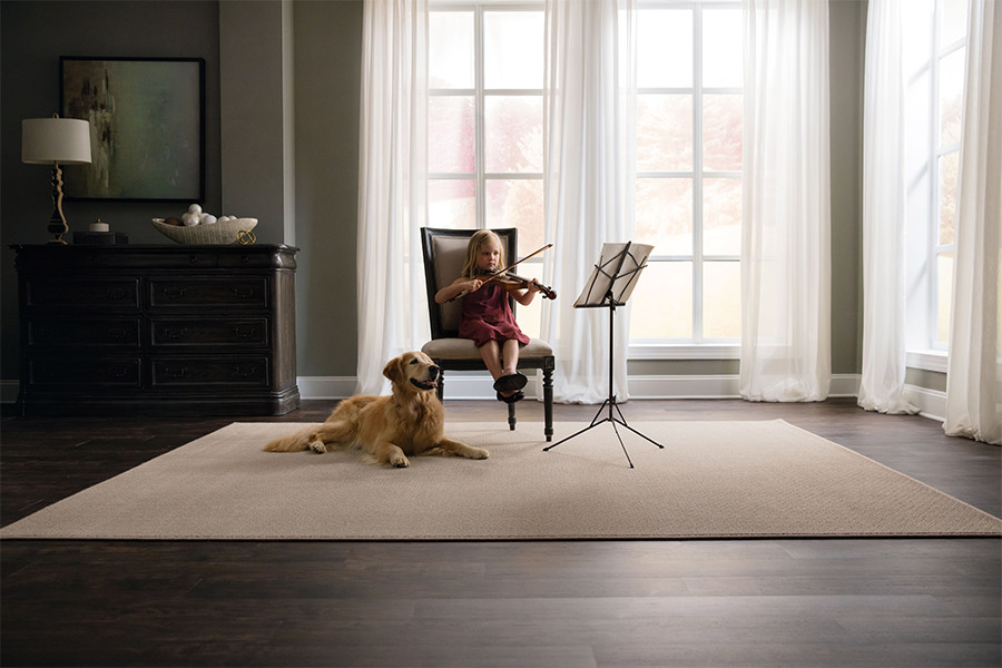 Modern area rugs in Ballwin MO from All Surface Flooring