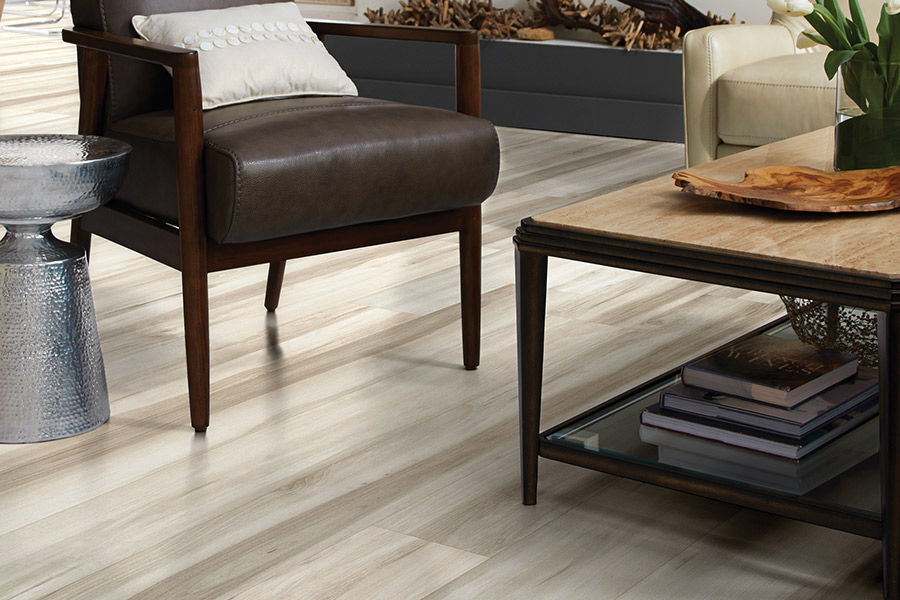 Luxury vinyl tile (LVT) flooring in Eastpoint, FL from Wakulla Carpet Brokers