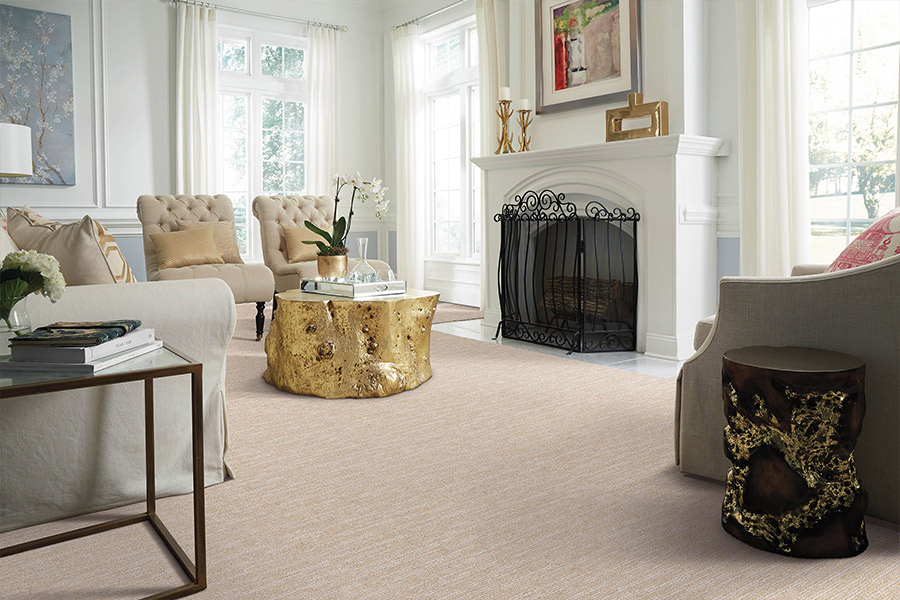 Modern carpeting in White Marsh, MD from Carpet Concepts