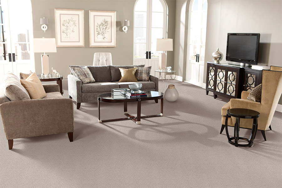 Beautiful textured carpet in Boca Raton, FL from Carpet Mills Direct