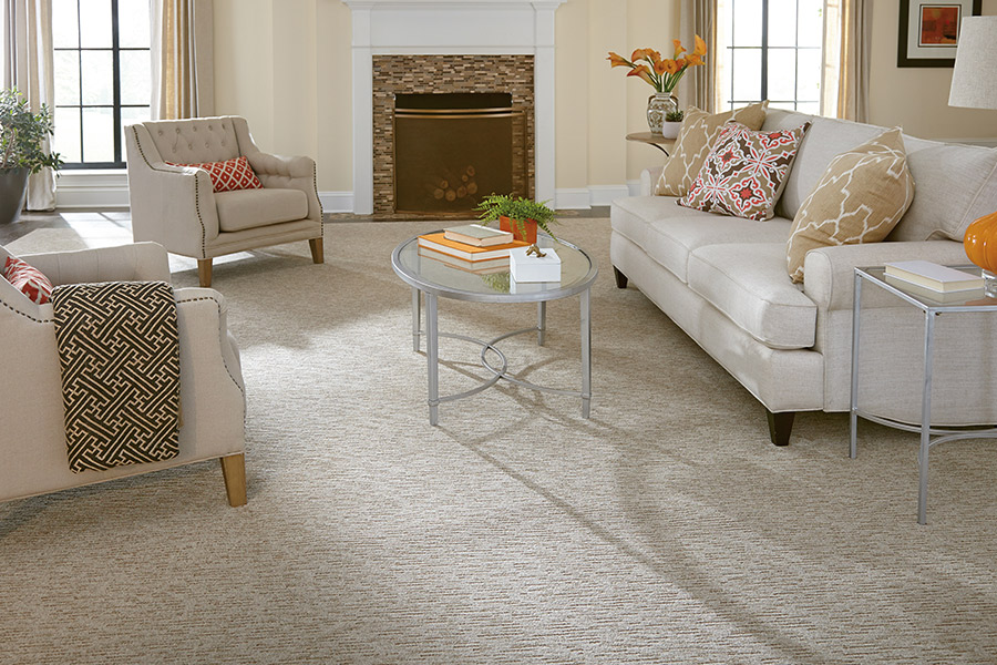 Beautiful textured carpet in Charlotte NC from Hughes Floor Covering