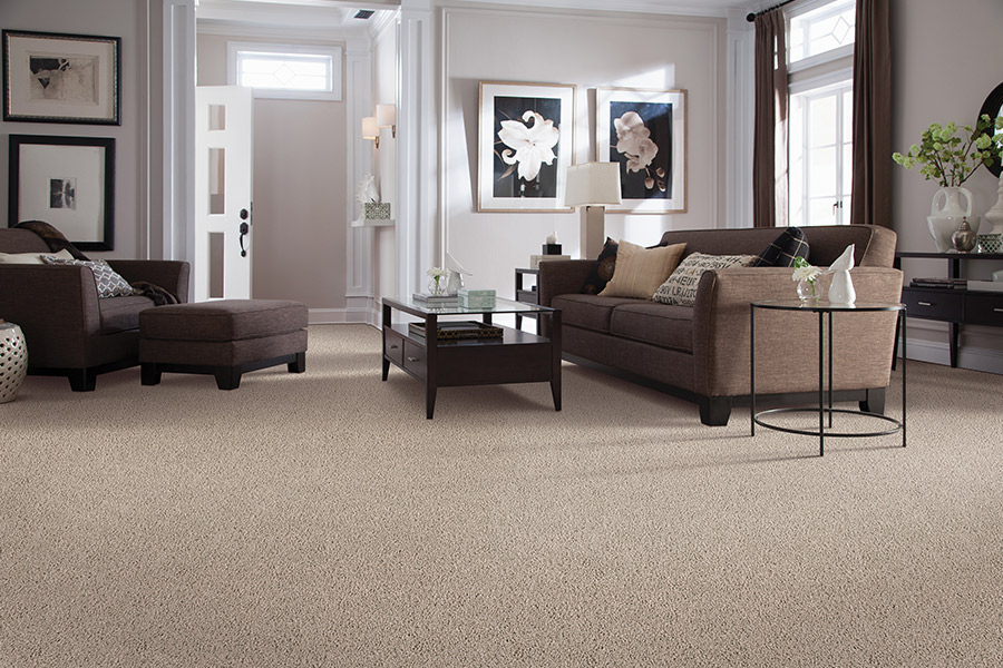 Beautiful textured carpet in St. Paul, MN from zFloors by Zerorez