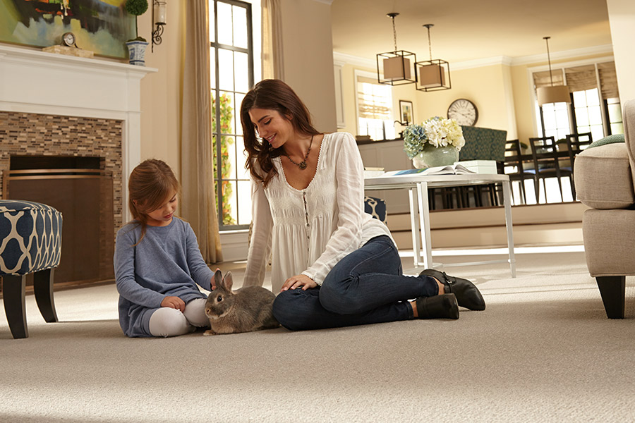 Family friendly carpet in Salem, OR from Surfaces Northwest