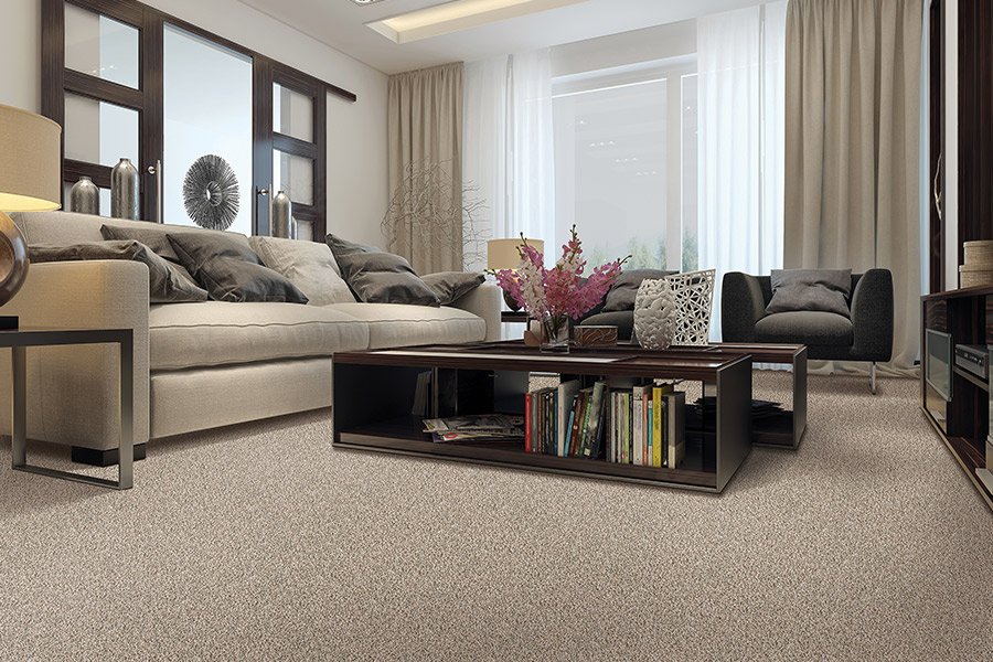 Beautiful textured carpet in Sweetwater County, WY from Rendon Flooring