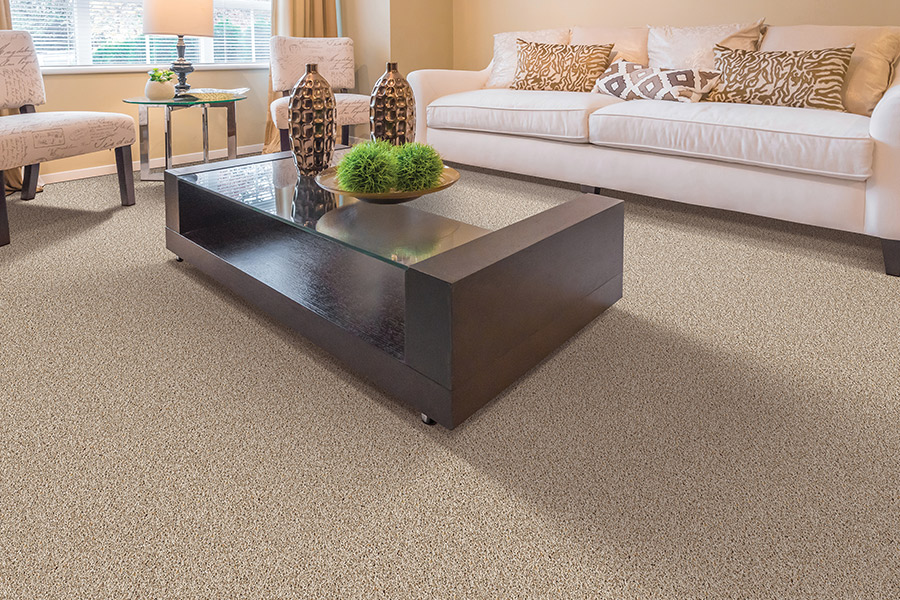 Beautiful textured carpet in Marion County, IN from The Carpet Man