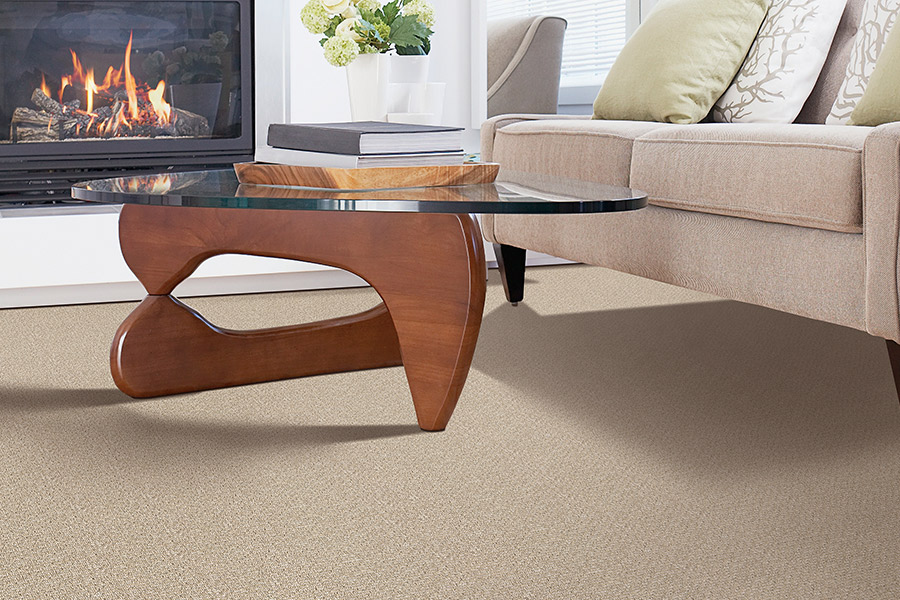 Modern carpeting in Eastover NC from Carolina Carpet and Floors