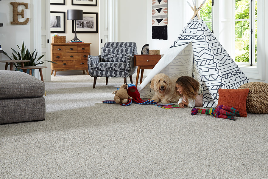 Family friendly carpet in Detroit, MI from Roman Floors & Remodeling