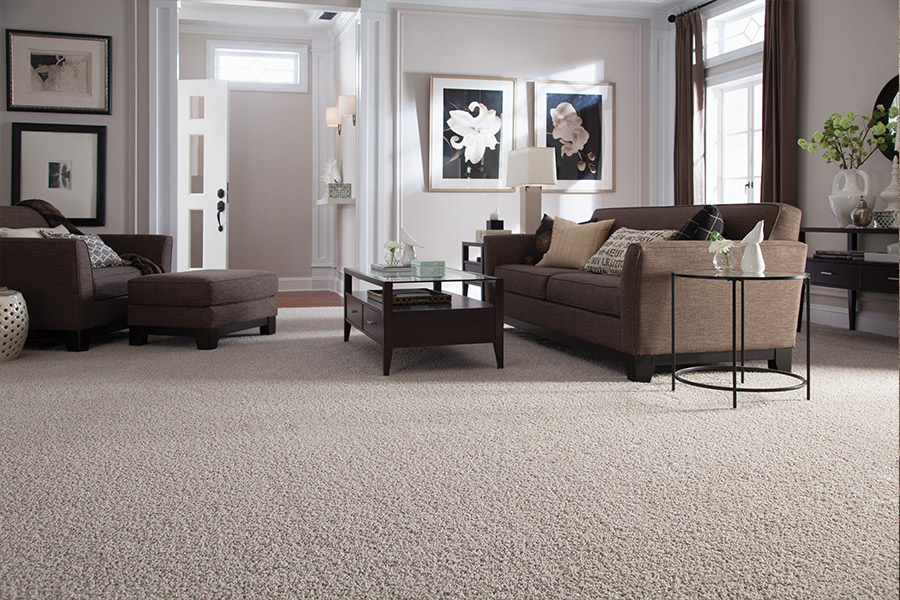 Beautiful textured carpet in Austin, TX from CRT Flooring