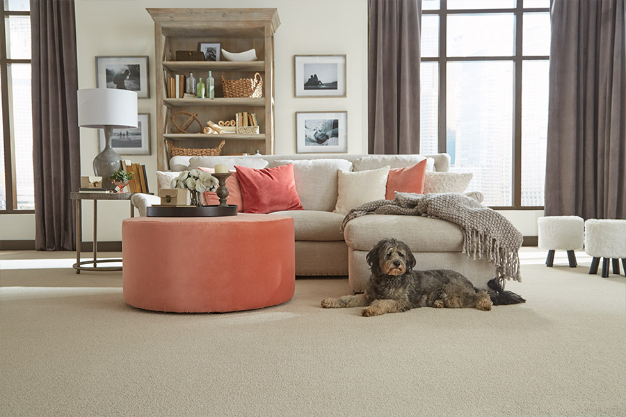 The Amherst, MA area's best carpet store is Summerlin Floors