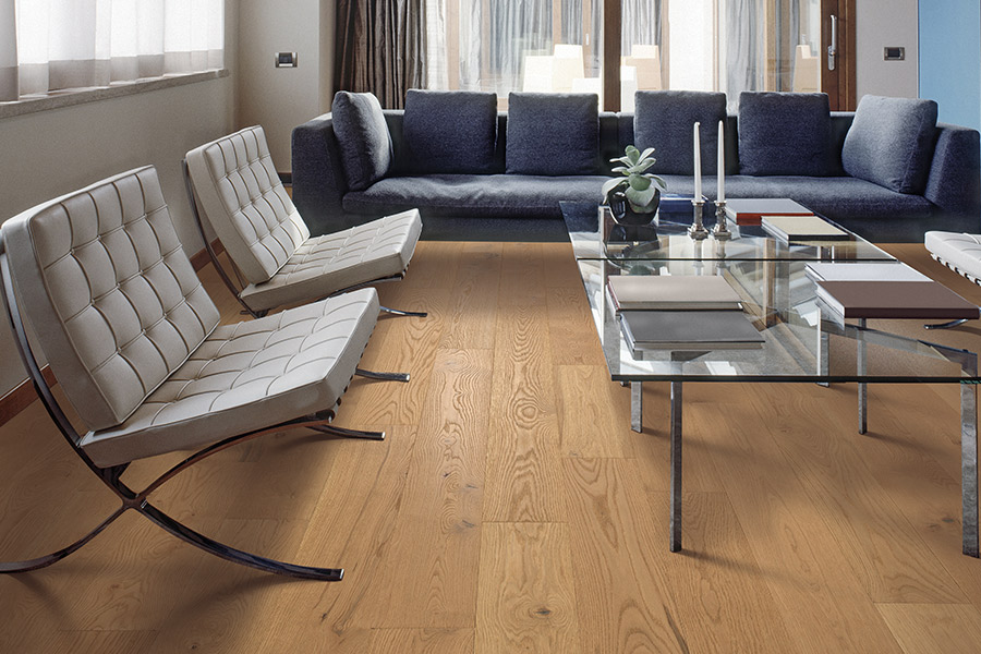 Contemporary wood flooring in Springfield VA from Carpetland