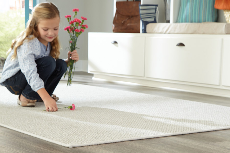 High quality and stylish area rugs in Abington PA from Easton Flooring