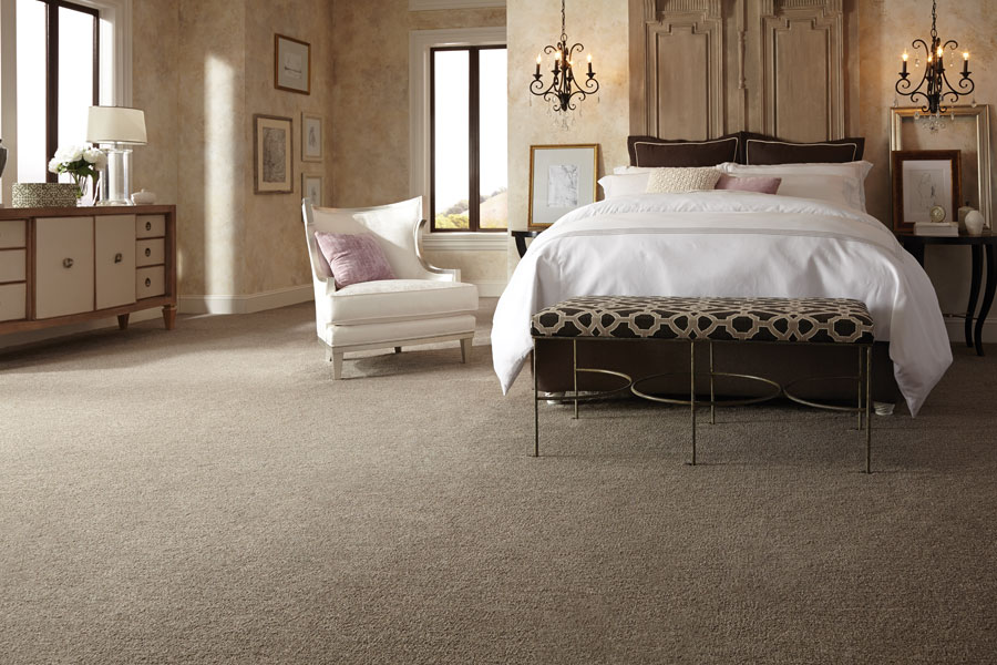 Beautiful textured carpet in Everett, WA from Reliable Floor Coverings