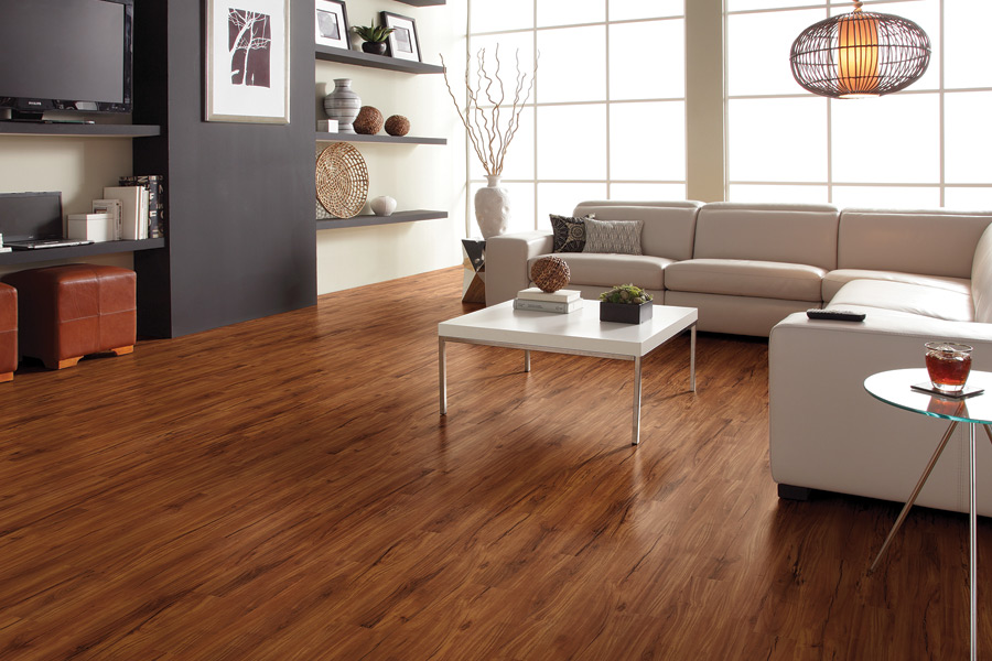 Wood look vinyl sheet flooring in Easthampton MA from Summerlin Floors