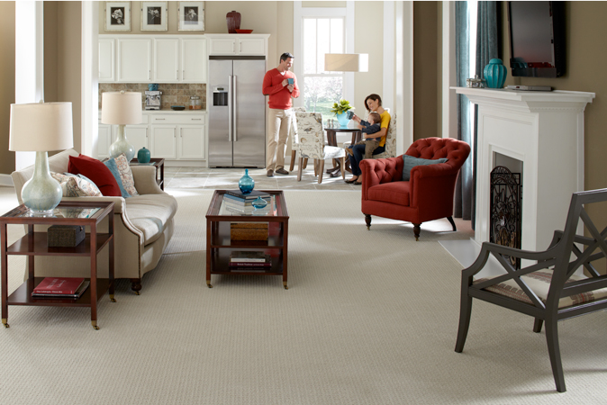 Family Room with Mohawk Carpet